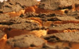 Crostini-con-fegatini