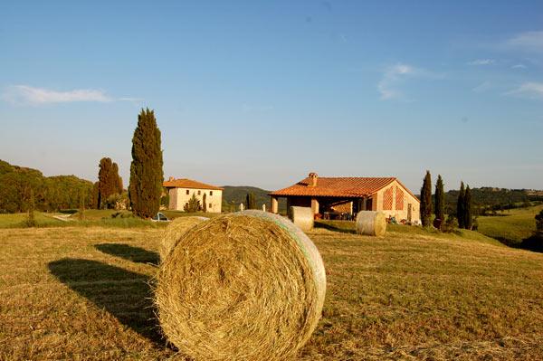 Covoni di fieno attorno al casale Toscano