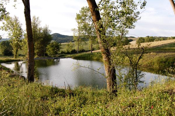 tipico laghetto toscano