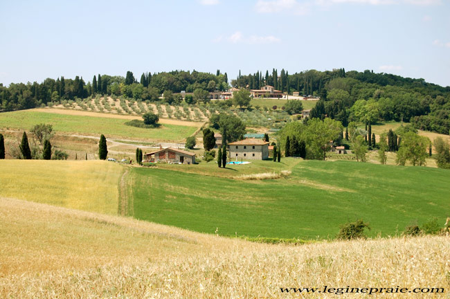 casale toscano estate