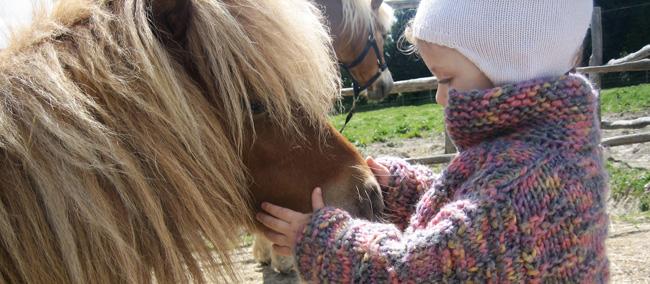 giocare con i pony