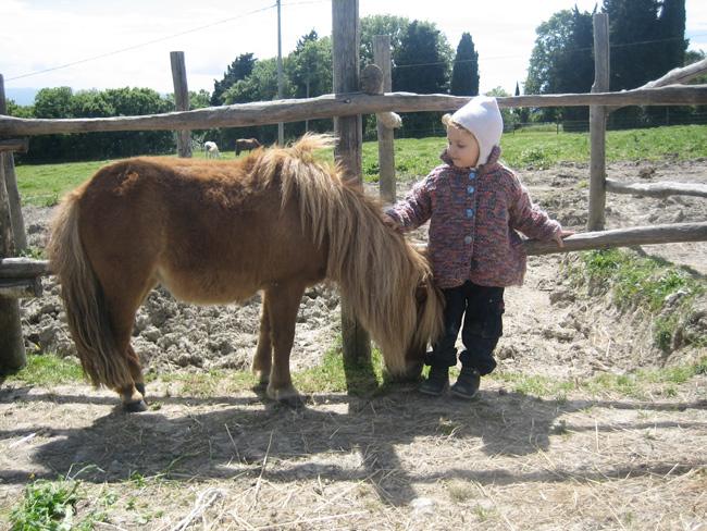 pony per bambini in Toscana