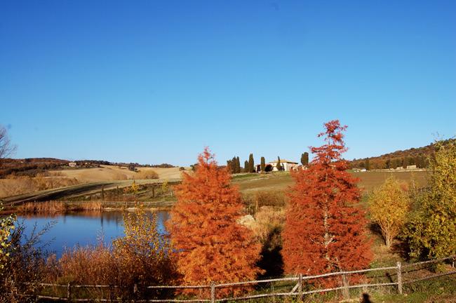 colori autunnali dal laghetto vicino alla villa toscana
