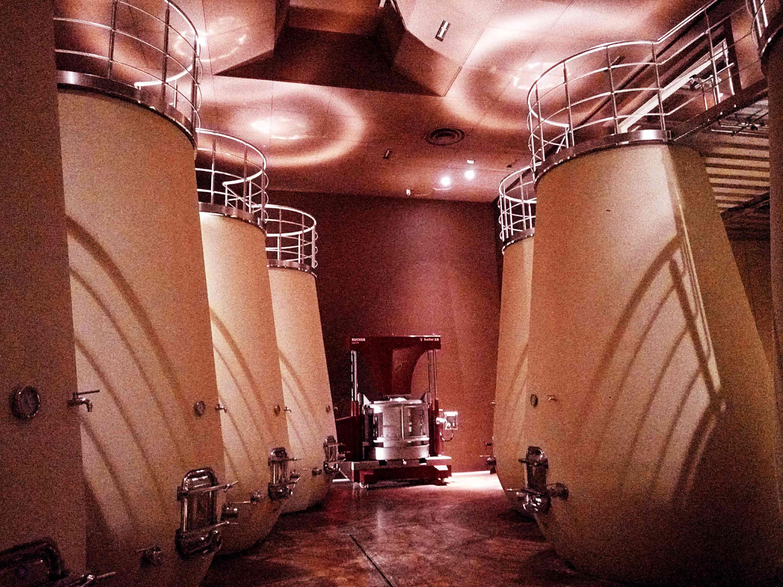 Villa in Toscana: tour del vino a piedi
